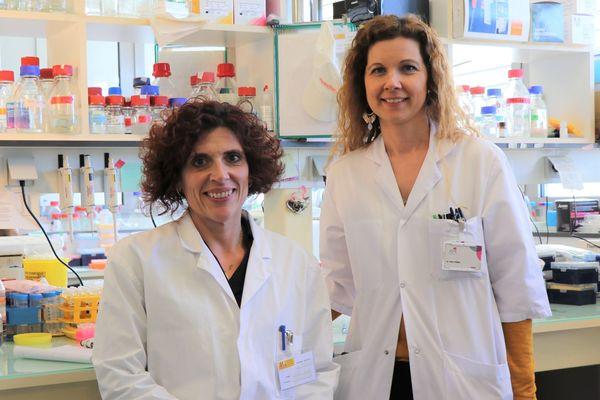 Montpellier -  Nelly Firmin et Laetitia Linares font partie du groupe de chercheurs mobilisé sur cette recherche - 04.02.20