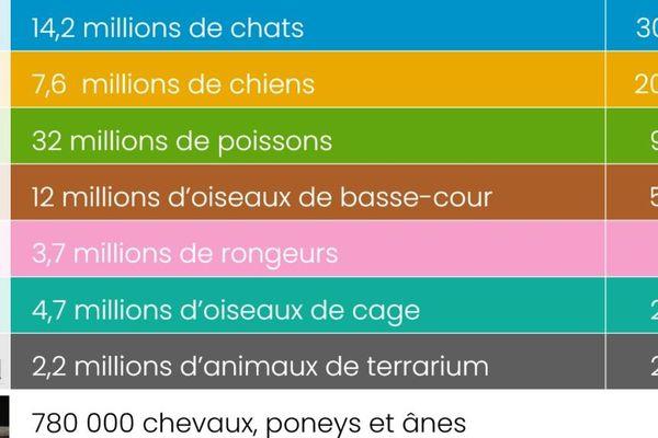 Nombre d'animaux de compagnie en France