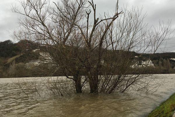 Le niveau de la Seine est monté, comme ici à Cléon. Le risque de crues et inondations est annoncé pour la nuit de dimanche à lundi.