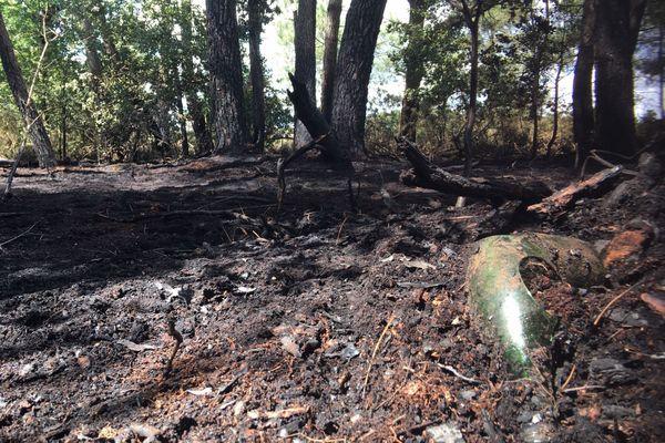 Au lendemain de l'incendie, le sol calciné de la forêt au lieu-dit la Touche à Iffendic