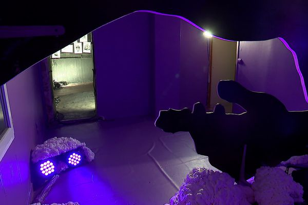 En raison de l'épidémie, la galerie de Villeneuve-Lès-Maguelone est fermée, mais la visite est possible en 3D.