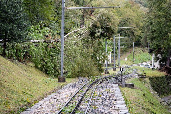 Des liaisons ferroviaires ont été coupées à la suite de chutes d'arbres sur les voies.
