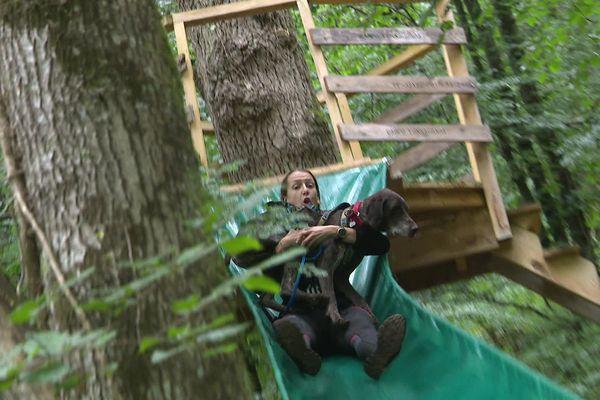 Le Will to go Park a imaginé un parcours d'obstacles adapté aux chiens et aux maitres.