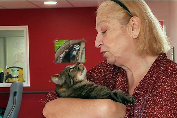 Devant poules, cobayes ou lapins, c'est le chat qui a été choisi par les familles, les résidents et les soignants