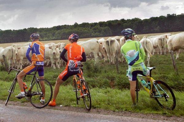 Trois coureurs du Tour de France en pleine pause-pipi, lors de l'étape Troyes-Nancy, le 7 juillet 2005.