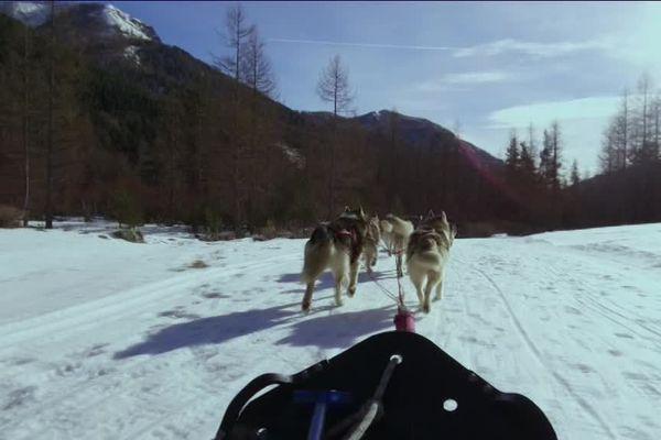 A Casterino, au pied du Mercantour, un musher propose des balades en traineau dans la neige.