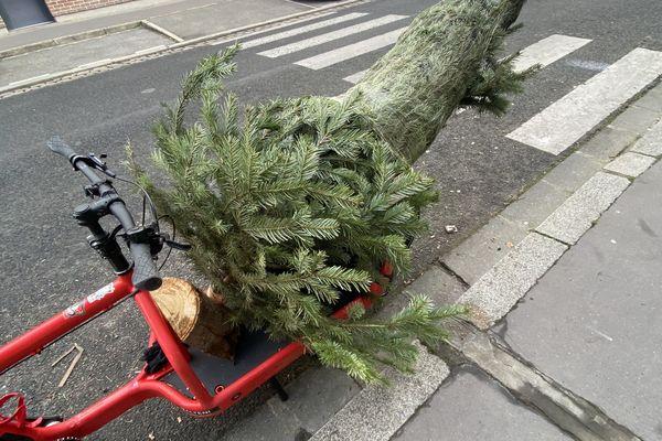 À Noël, le vélo cargo de Beefast a livré un sapin de 2,20 mètres à un particulier