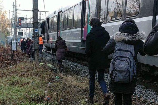 Les voyageurs ont dû descendre sur les voies et marcher jusque des bus.