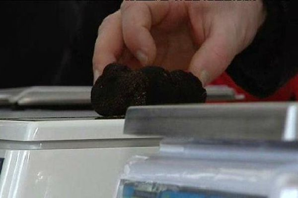 7€ les 10 grammes de truffes ce matin au marché de Chartrier Ferrière