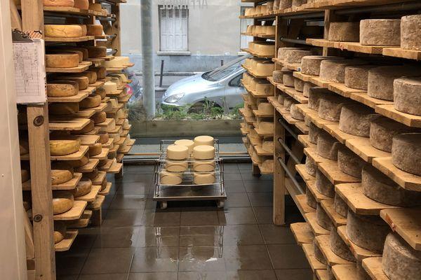Dans la cave de la Laiterie La Chapelle, l'odeur de 2.100 kg de fromage embaume tout le magasin. Les tommes sont alignées sur des planches en bois d'acacia, pour certaines depuis trois mois.