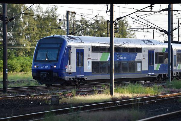 Le trafic TER entre la Picardie et Paris est perturbé en cette matinée du 24 janvier, en raison de deux pannes.