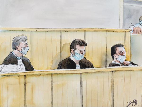 Les avocats des parties civiles.