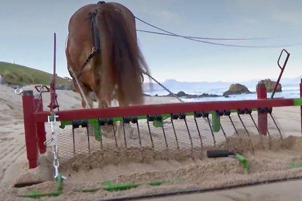 Pour le nettoyage du sable, différentes types de herses peuvent être utilisées