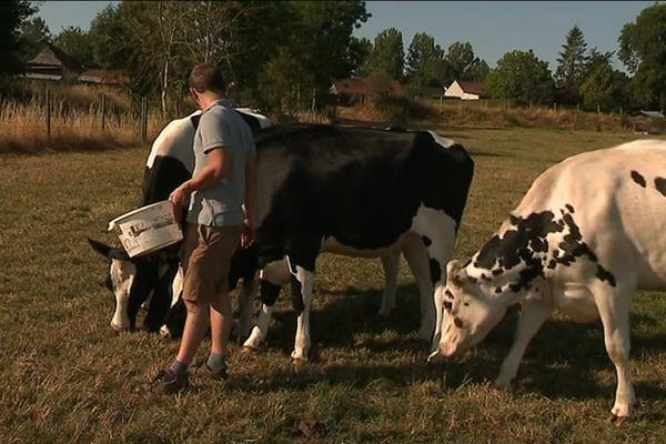 L'épidémie de coronavirus a chamboulé l'organisation des agriculteurs.