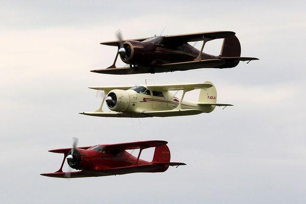 Fly in 2013