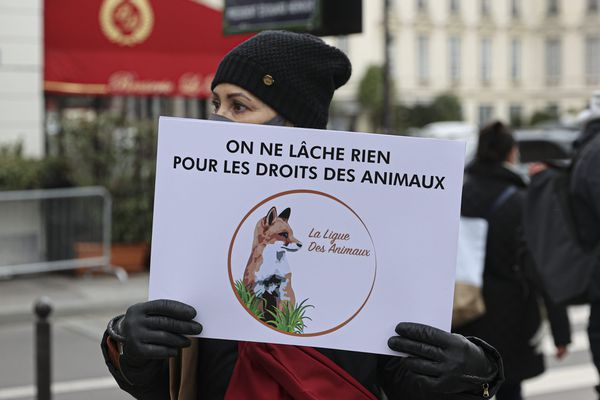 Manifestation devant l'Assemblée nationale, Paris, 26 janvier 2021