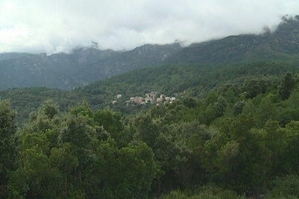 A 700 mètres d'altitude dans le Fiumorbu en Haute-Corse