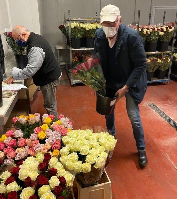 Les roses seront offertes en fin de semaine dans la vallée de la Roya.