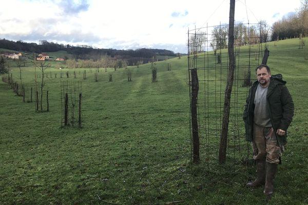 William Bouvier a planté des acacias et des sapins de Douglas sur cette parcelle. Ses vaches pourront y trouver de l'ombrage en cas de fortes chaleurs estivales.
