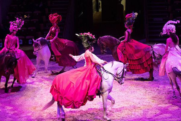 Le spectacle est à découvrir jusqu'à fin novembre au musée du cheval à Chantilly