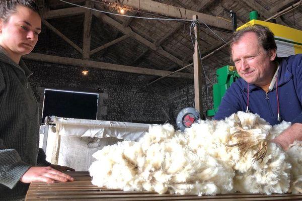 La laine des moutons Mérinos, une fibre extrêmement résistante, longue et frisée.