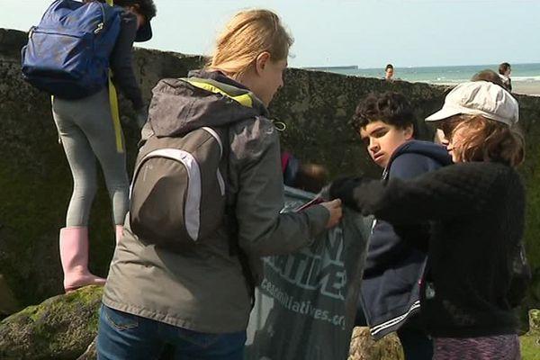 Ces élèves de 6e sont venus de la région parisienne pour ramasser les déchets sur la plage de Wimereux.