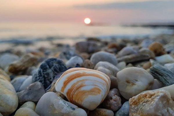 Coquillages sur la plage par Kevin Juguet