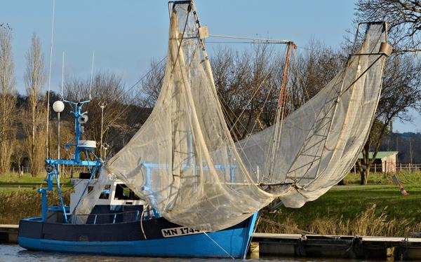 bateau de pêche à la pibale à Mortagne sur Gironde ( 17 )