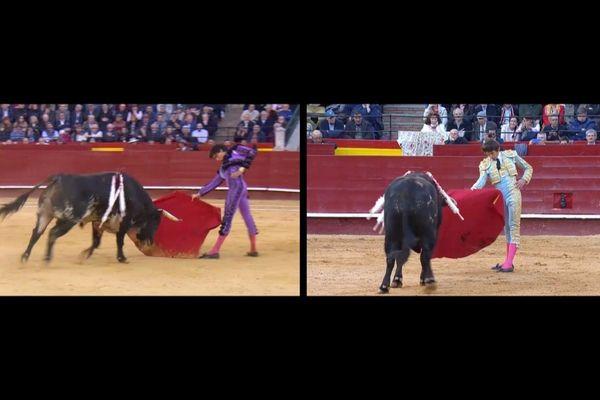"""Leurs tauromachie se ressemblent. Tout, cependant, les oppose. Andrés Roca Rey et Sébastien Castella se sont livrés à un duel à distance lors des dernières """"fallas"""" de Valencia."""