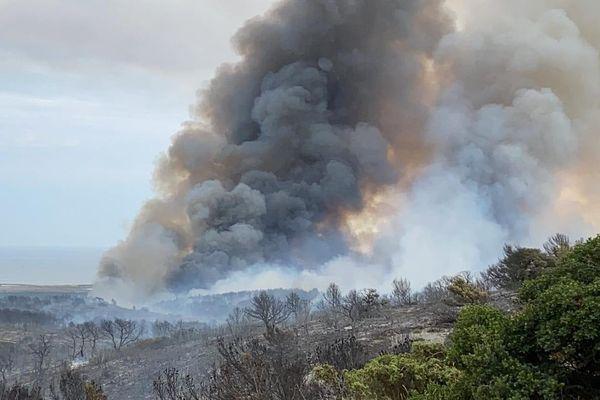 Plusieurs centaines d'hectares sont déjà partis en fumée.