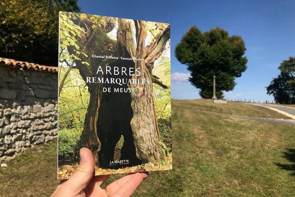 """""""Plus de 400 arbres remarquables sont recensés dans la Meuse"""", explique Chantal Billiotte, co-auteure du livre Arbres remarquables de Meuse."""