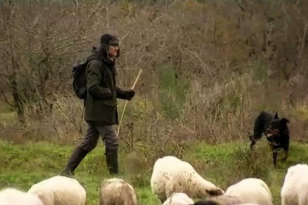 Le pastoralisme, ou bien le recours a des traditions venant plutôt des montagnes...