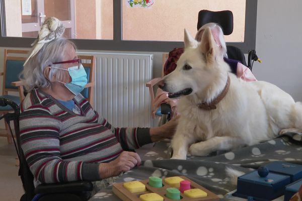 Tous les 15 jours, chiens, oiseaux, lapins passent une heure avec les résidentes de la maison de retraite municipale de Gignac. Leur présence permet aussi de faire remonter des souvenirs.