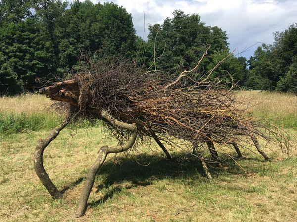 """Tree animal"" du Hollandais Michael Hoedjes."