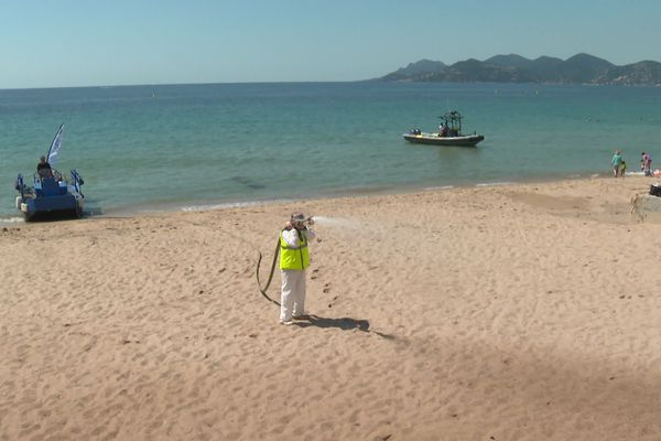 La plage est désinfectée avec un mélange d'eau de mer et d'eau oxygénée diluée.