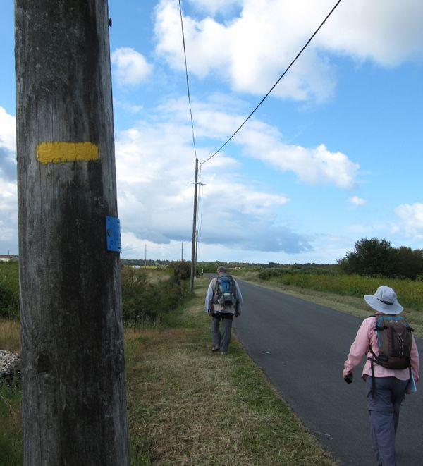 Sur Oléron, plusieurs sentiers sont balisés, comme celui-ci, traversant les anciennes salines