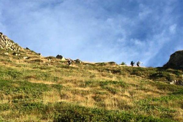Ultra-Trail Côte d'Azur Mercantour: 145 km de la mer à la montagne !