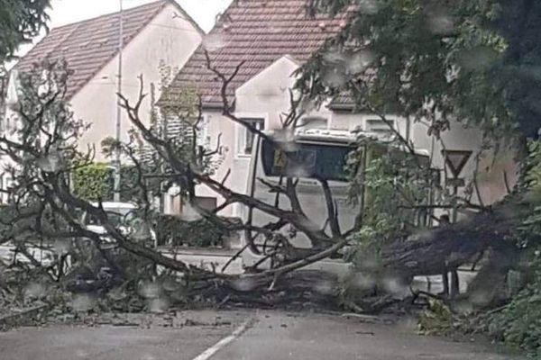 Le maire de Saverne a publié une photo de l'accident sur sa page Facebook