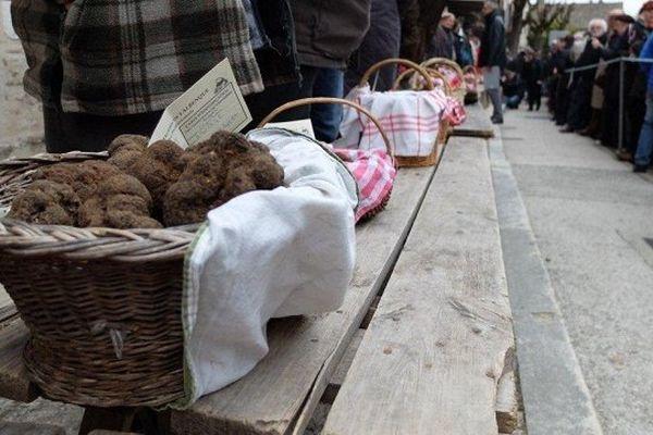 Le célèbre marché aux truffes de Lalbenque (Lot) - qui donne la tendance en matière de prix - aura bien lieu mardi 1er décembre