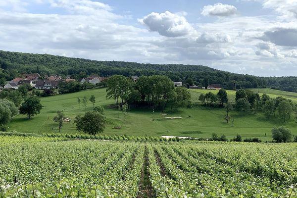 Le monde du champagne, ici à Romery (Marne), va devoir traverser d'importantes turbulences