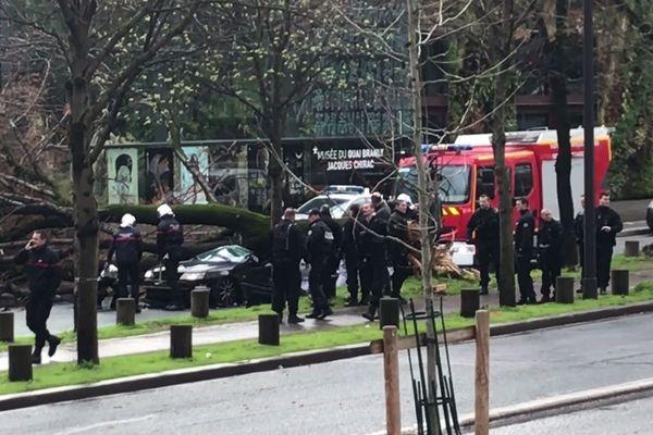 L'arbre a chuté en plein sur le véhicule de la victime.