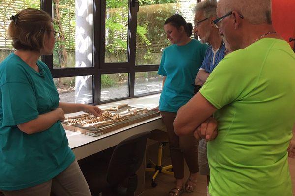 Des anthropologues montrent aux visiteurs comment sont rangés des os humains trouvés lors de fouilles. Ribemont-sur-Ancre, le 17 juin 2017