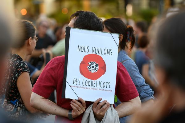 Lors d'une manifestation contre les pesticides, le 5 octobre 2018 à Rennes