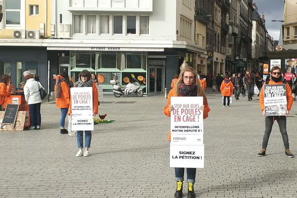 Une quinzaine de bénévoles de L214 se sont mobilisés sur la Place de Jaude à Clermont-Ferrand pour réclamer l'interdiction de l'élevage des poules en cage.