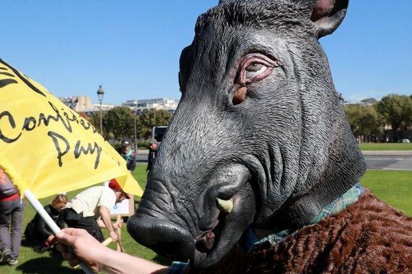 Un militant de la Confédération paysanne déguisé en sanglier, sur l'esplanade des Invalides, à Paris, le 26 septembre 2018, pour protester contre le manque d'action des pouvoirs publics pour lutter contre les ravages de cet animal.