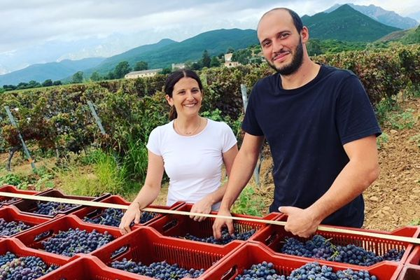 Laura Mondange et son frère Andria ont repris les vignes de leur père sur la commune de Ghisonaccia.