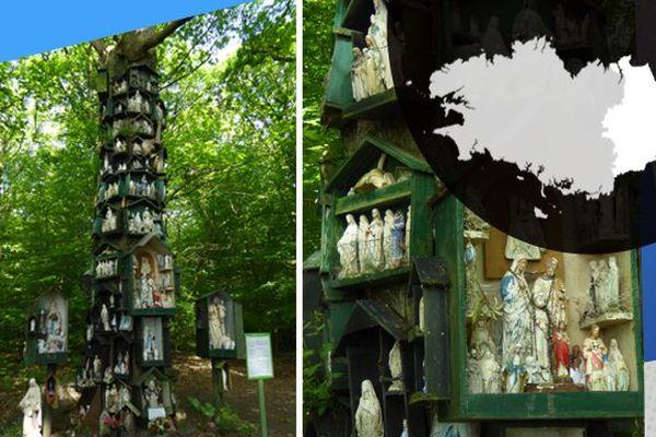 L'arbre de la Vierge de Rannée, porte sur lui les croyances religieuses