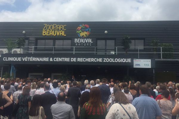 Le zoo de Beauval a fait construire une clinique vétérinaire unique en Europe