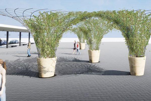 Des corolles végétalisées pour apporter un peu de fraîcheur : un projet porté par Urban Canopee et choisi par la ville de Toulouse.