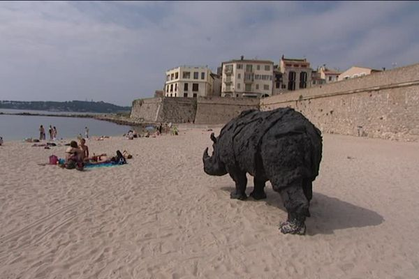 Le rhinocéros de Rivalta installé sur la plage de la Gravette d'Antibes